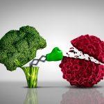 الحماية من امراض السرطان و دور الغذاء