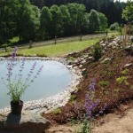 Zahrada s vodou