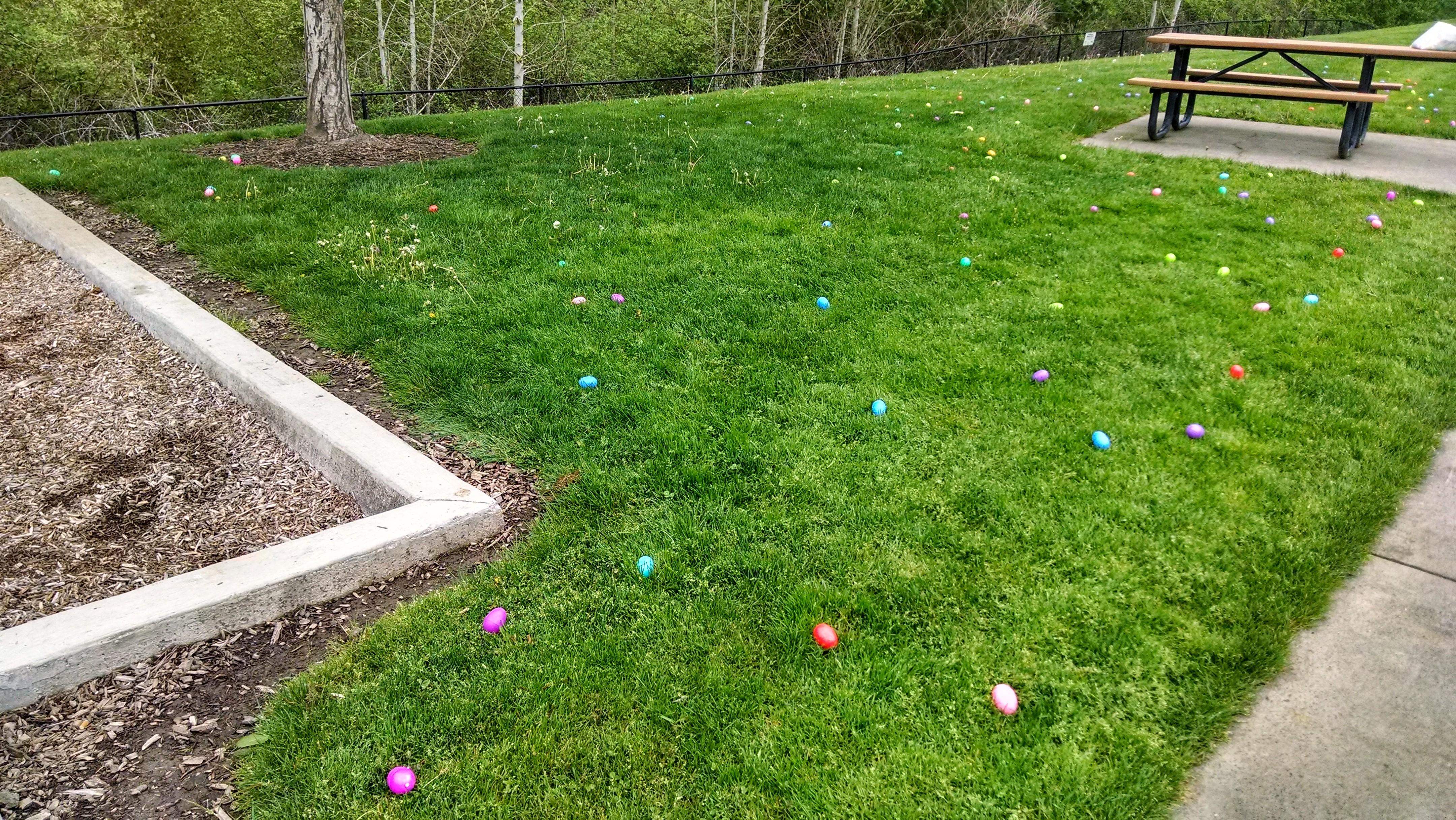Easter-2014 (16)