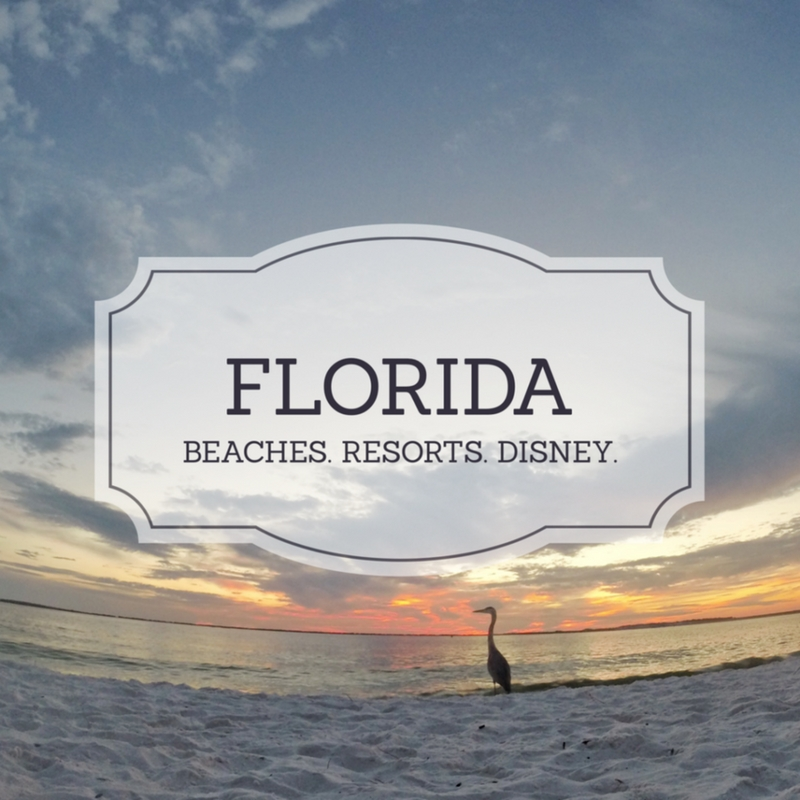 Florida, United States, travel advice, arboursabroad, south east