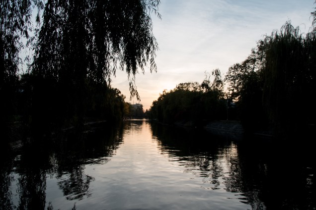 Bega River, Timisoara, River, sunsets on the water, willow tree silhouette, arboursabroad