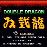Double Dragon (NES Review)