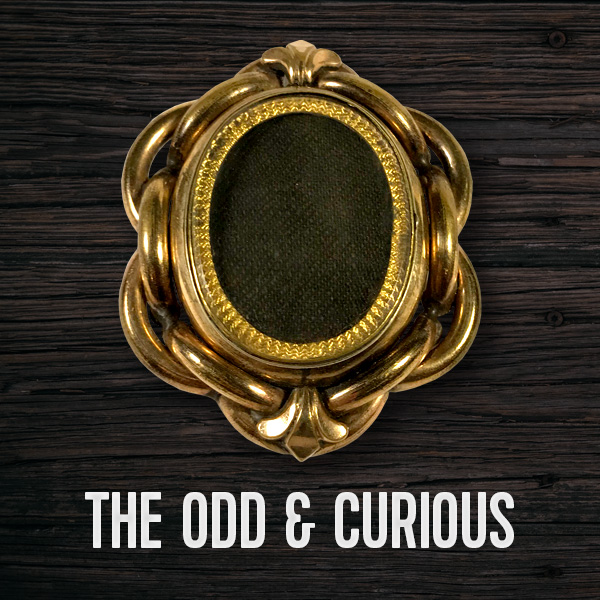 Odd & Curious