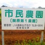 長岡市で気軽に自分のオリジナル野菜、作りませんか?長岡市の体験農園