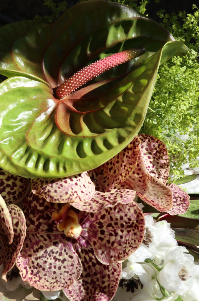 arcflora, floral design, los angeles, orchids, exotics, anthurium