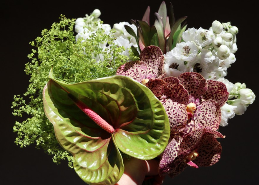 arcflora, floral design, orchids, exotics, anthurium