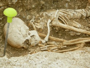 Bulford skeleton