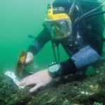 Mesolithic maritime discovery at Bouldnor Cliff