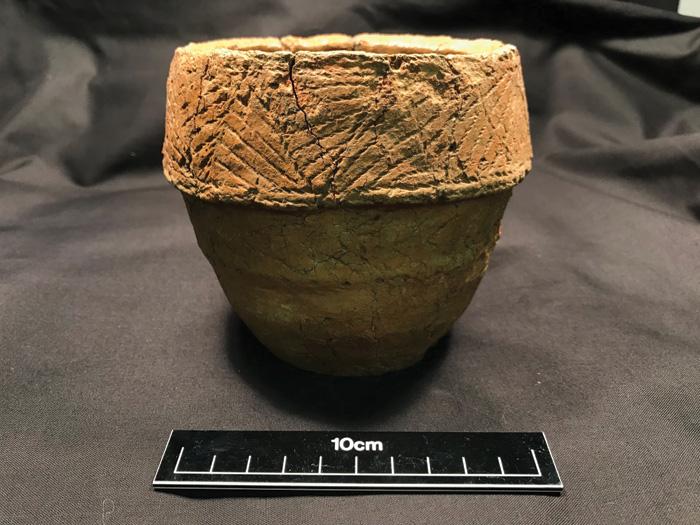 A bipartite collared urn