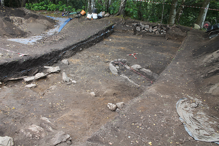 Trench with postholes and stones visible