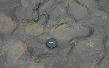 Happisburgh England Footprints