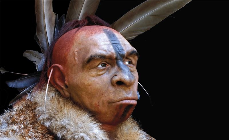 neanderthals and human evolution Neanderthals co-existed with modern humans for long periods of time  and it is  likely that neanderthals evolved in europe from this species.
