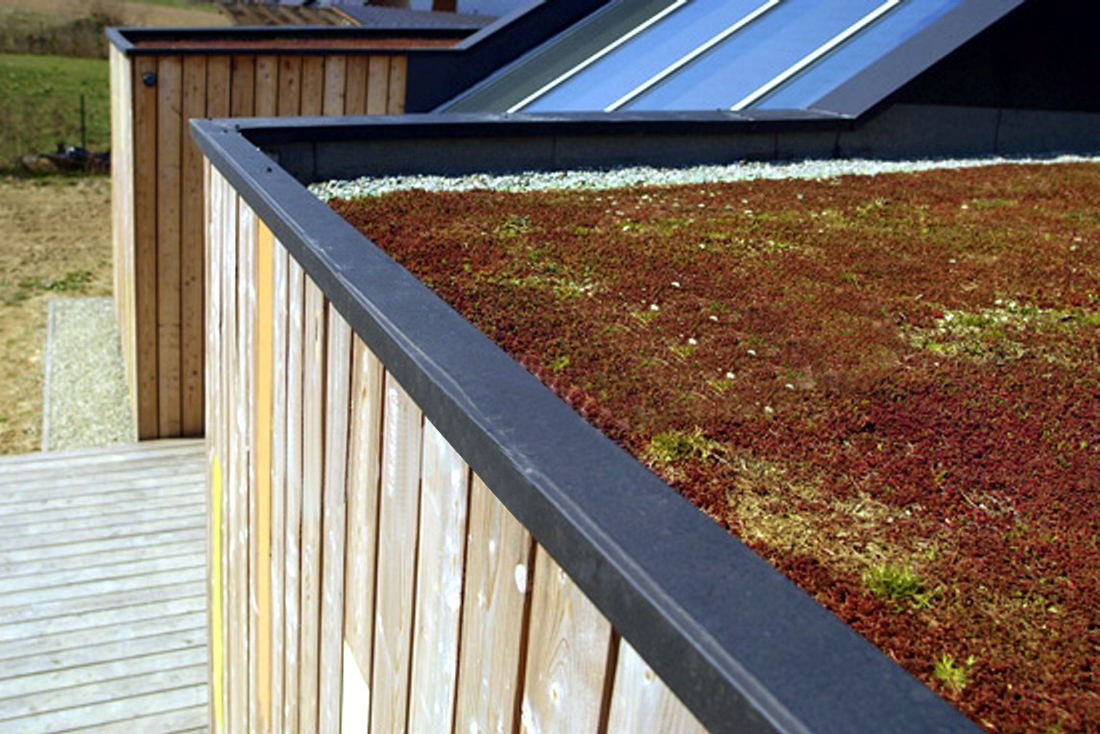 09-green-roof-phot-t-pikula 09-green-roof-phot-t-pikula
