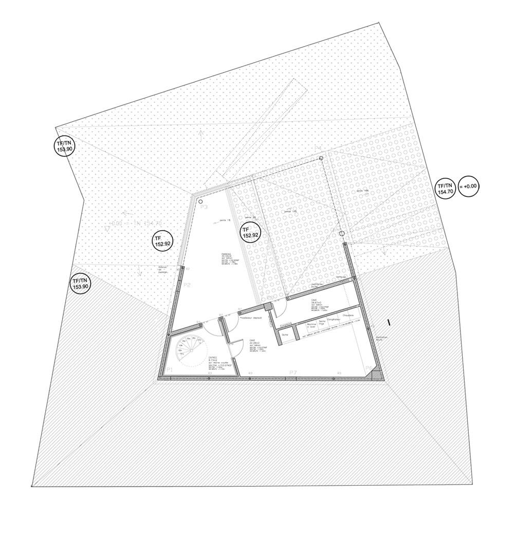 1364367165-planta-menos1 plan -1