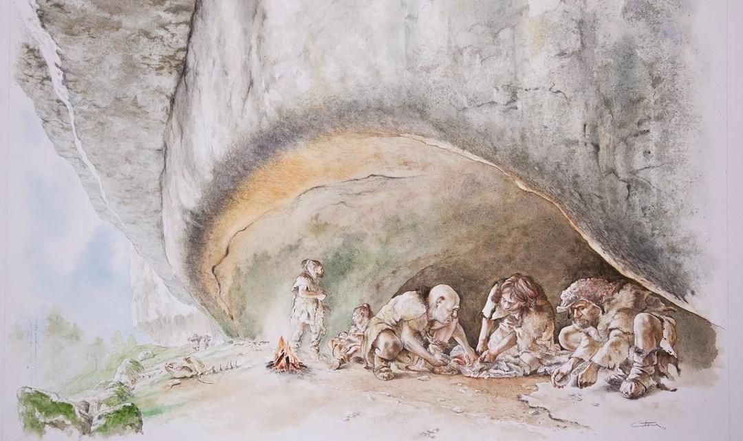Orso delle caverne: perché si è estinto? L'uomo sul banco degli imputati