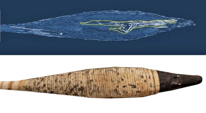 archeologia invisibile coccodrillo