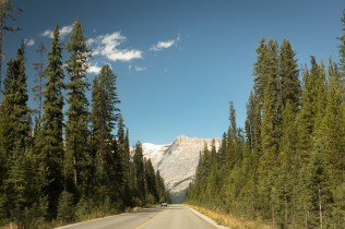 Road to the natural bridge