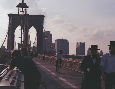Job Opportunity New York
