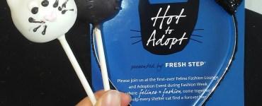 Hot-to-Adopt