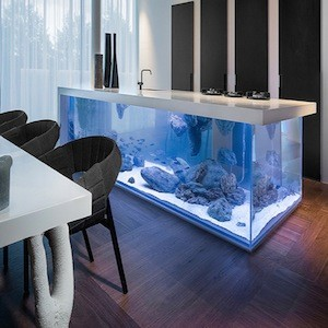 Modern Kitchen Island Doubles As Spectacular Fish Tank