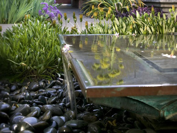 Water Pond Ideas Backyard