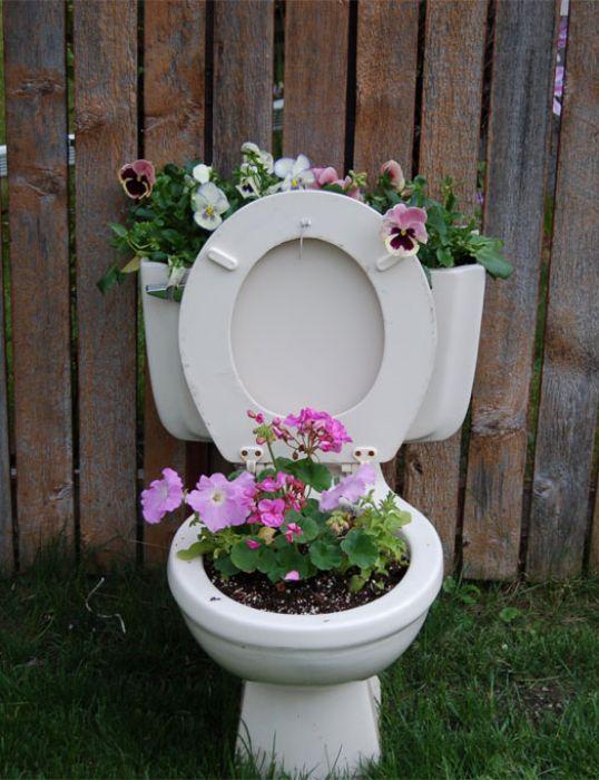 Kinds Flowers Garden