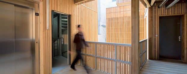 architecturebois-projet-darchi-tete-en-l-air-bois-wood-3
