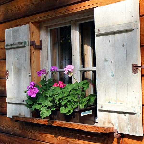 maison bois classique