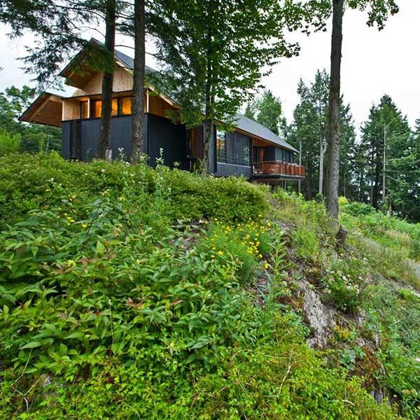 maison bois neuve dans la nature