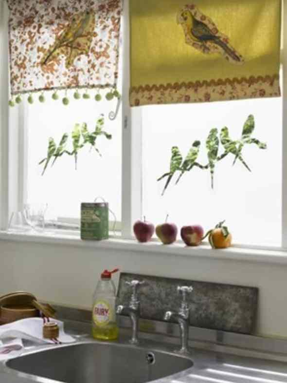 Birds at your kitchen windows