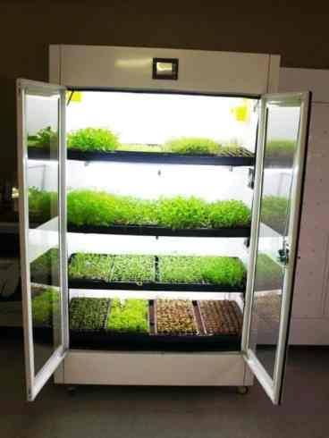 Kitchen Nano Garden _b573ll_Design