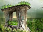 The-mangrove-a