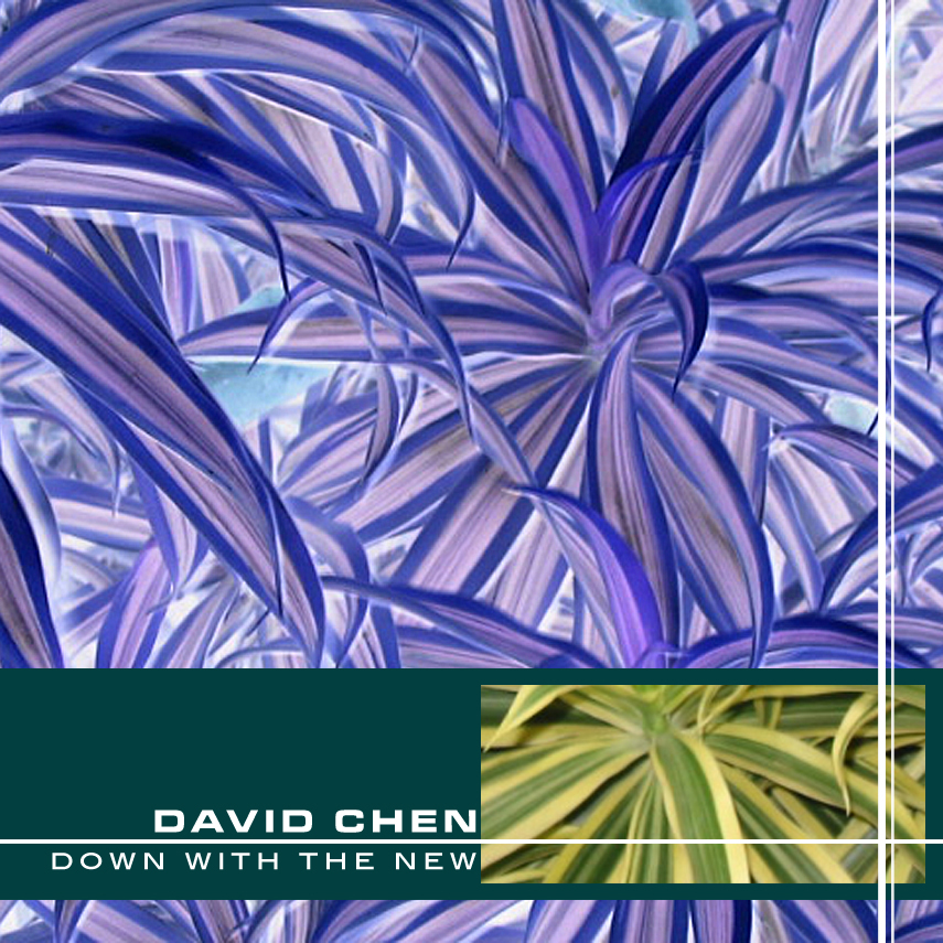 (qd-4218) David Chen -  Down With the New
