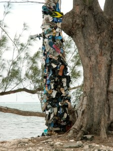The Shoe Tree, Grand Cayman