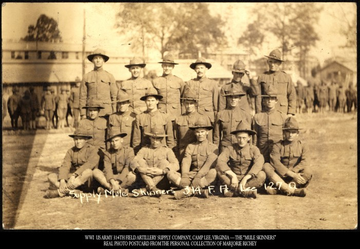 "WWI US Ar 314myth Field Artillery Supply Company, Camp Lee, Virginia — The ""Mule Skinners"": Real Photo Postcard from the Personal Collection of Marjorie Richey."