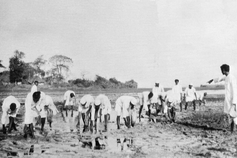 """Satyagrahis"" recogiendo sal en Aat, cerca de Dandi"