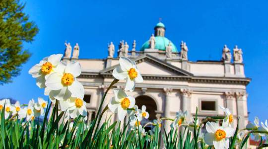 referenti diocesani pro Sinodo
