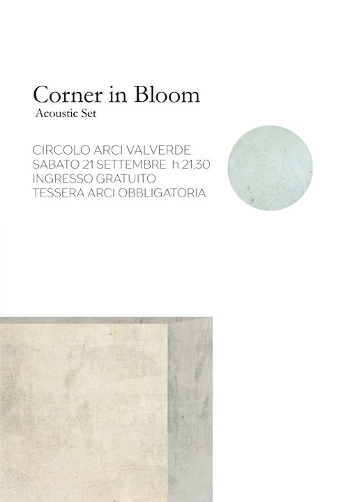 Concerto - Corner in Bloom