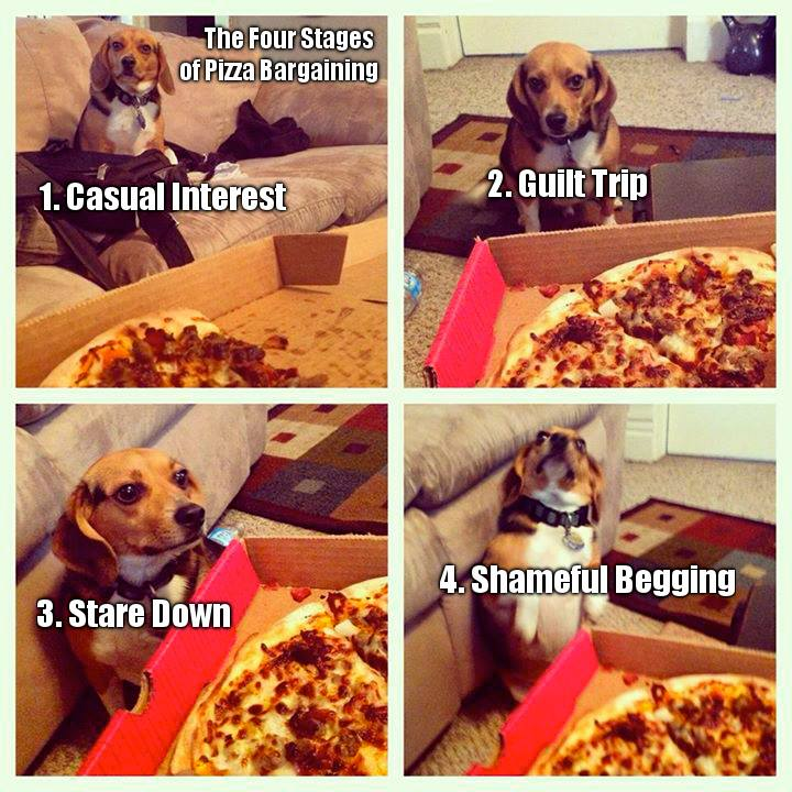 4 Stages of Pizza Bargaining