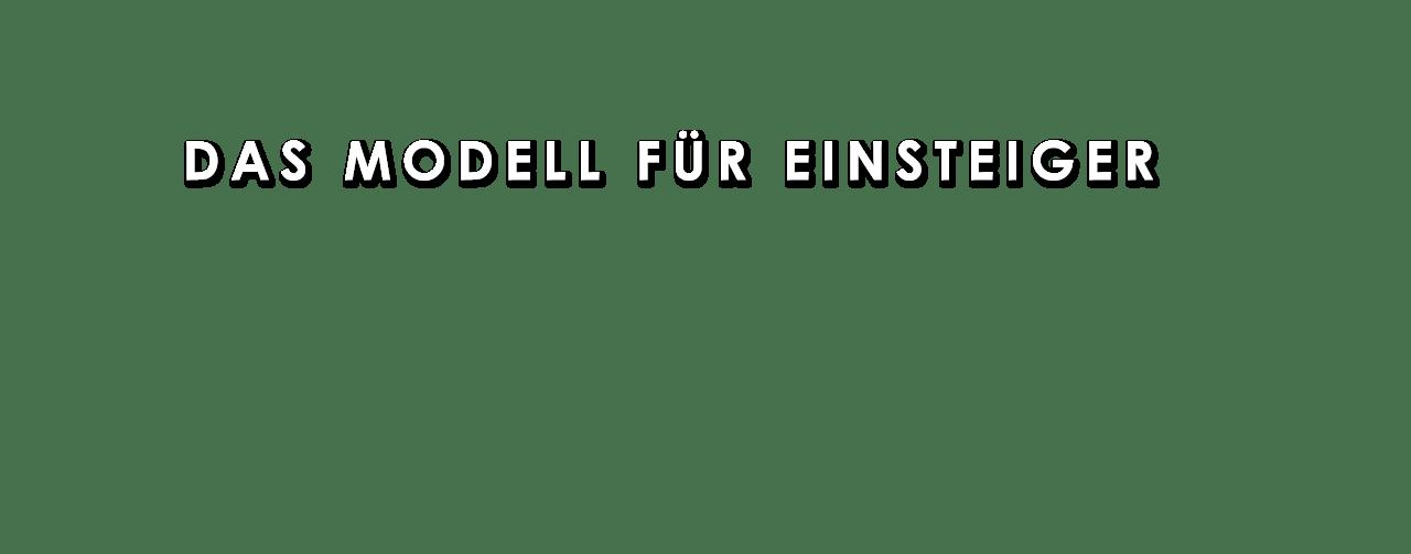 Das Einsteiger Modell, Schrift
