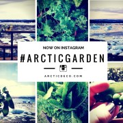 #ARCTICdeco Now On Instagram: #ArcticGarden