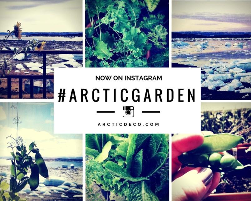 ArcticDeco.com: #ArcticGarden on Instagram