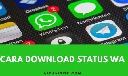 download status wa