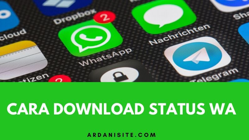 download status wa