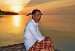 Biografi Joko Widodo, Tukang Kayu Yang Menjadi Seorang Presiden Indonesia