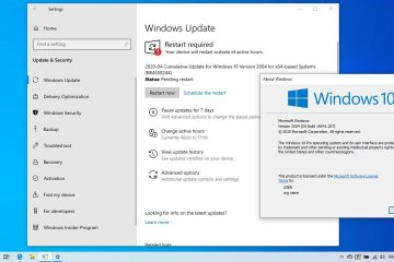 Actualización Mayo 2020 Windows 10 version 2004