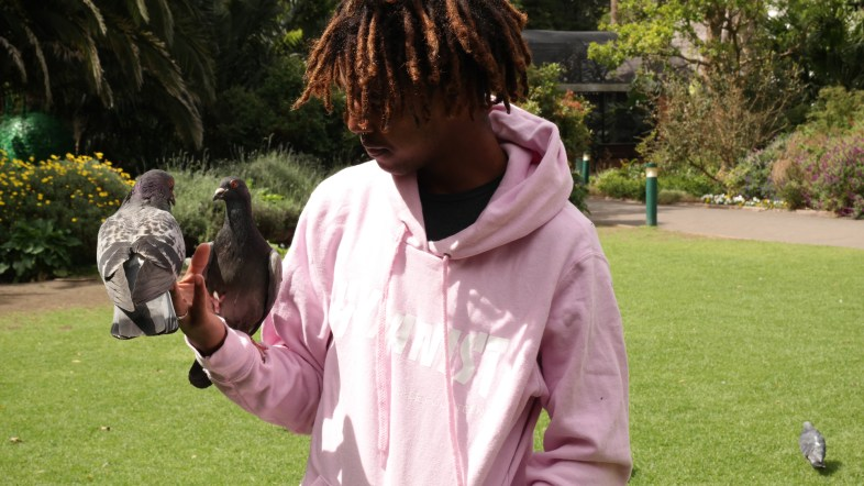 The Bird and Me