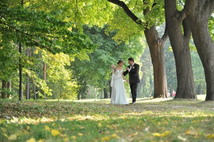 Репортажная свадебная фотография. Свадьба Сергея и Ольги. Прогулка по парку