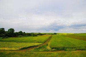 Фото природы. Пейзажи. Текстуры. Профессиональный фотограф в Киеве. 69