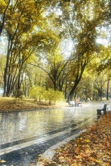 Фото природы. Пейзажи. Текстуры. Профессиональный фотограф в Киеве. 76